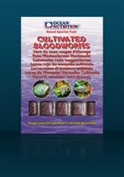 Ocean Nutricion Cultivated Bloodworms blister